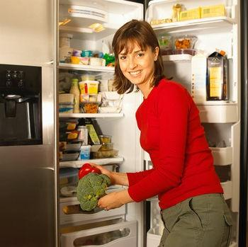 Mountain View Refrigerator Repair